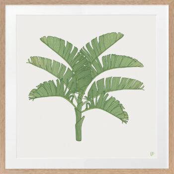 Tropical Plantation Green Artwork 1 - OAK FRAME