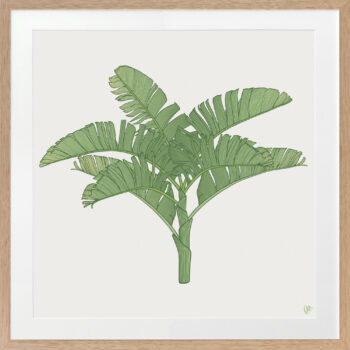 Tropical Plantation Green Artwork 3 - OAK FRAME