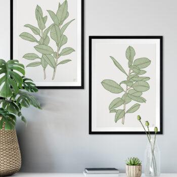 Rubbery Leaf 1 & 2 Green - BLACK FRAMES mock-up