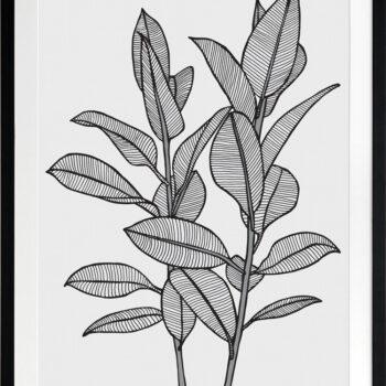 Rubbery Leaf 1 Black - BLACK FRAMES