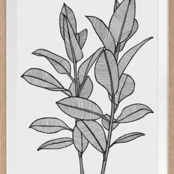 Rubbery Leaf 1 Black - OAK FRAMES