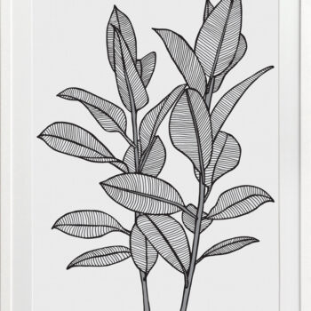 Rubbery Leaf 1 Black - WHITE FRAMES