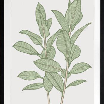 Rubbery Leaf 1 Green - BLACK FRAMES