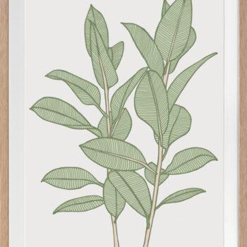 Rubbery Leaf 1 Green - OAK FRAMES