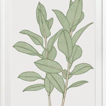 Rubbery Leaf 1 Green - WHITE FRAMES