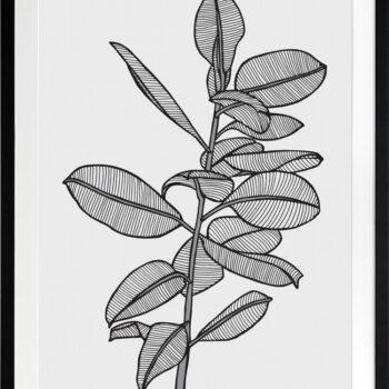Rubbery Leaf 2 Black - BLACK FRAMES