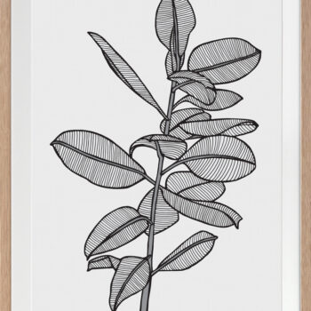 Rubbery Leaf 2 Black - OAK FRAMES