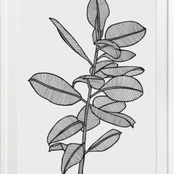 Rubbery Leaf 2 Black - White FRAMES