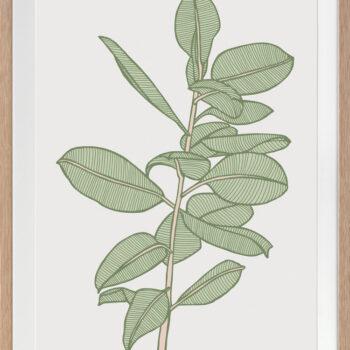 Rubbery Leaf 2 Green - OAK FRAMES