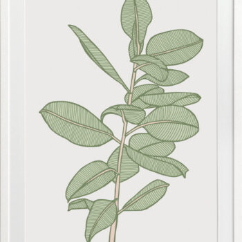 Rubbery Leaf 2 Green - WHITE FRAMES
