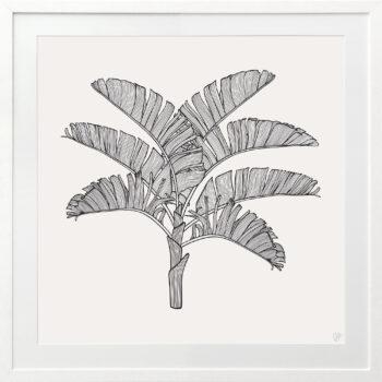 Tropical Plantation Black Artwork 1 - WHITE FRAME