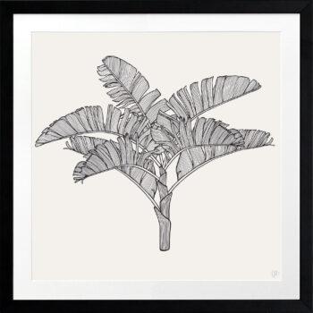Tropical Plantation Black Artwork 3 - BLACK FRAME