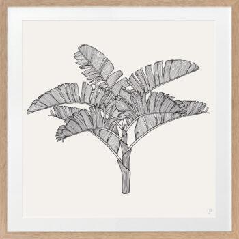 Tropical Plantation Black Artwork 3 - OAK FRAME