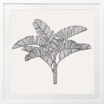 Tropical Plantation Black Artwork 3 - WHITE FRAME
