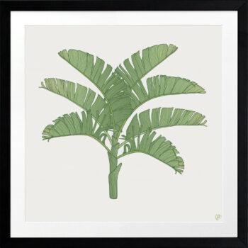 Tropical Plantation Green Artwork 1 - BLACK FRAME