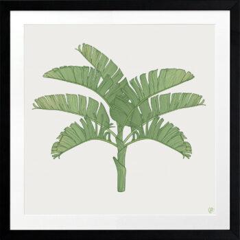 Tropical Plantation Green Artwork 2 - BLACK FRAME
