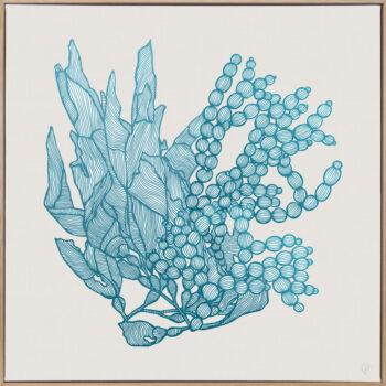 Sea Garden Aqua 1 Canvass Oak Square Frame
