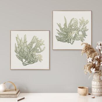 Sea Garden Seaweed 1&2 Canvass Oak Square Frame